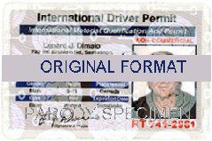 fake id international scannable europe fake license