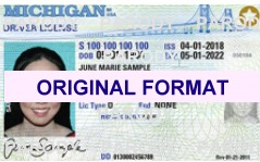 Michigan DRIVER LICENSE ORIGINAL FORMAT, DESIGN SPECIFICATIONS, NOVELTY SECURITY CARD PROFILES, IDENTITY, NEW SOFTWARE ID SOFTWARE Michigan driver