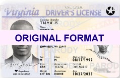 fake virginia driving license id card